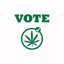 Vote weed white sublimation t-shirt