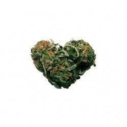 Tee shirt cannabis coeur de...