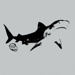 Tee shirt requin SHARK974...