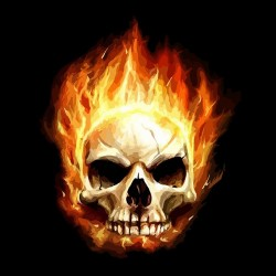 t-shirt skull in flames...
