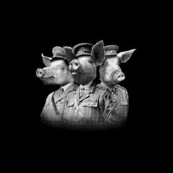 Tee shirt Cochons de guerre...
