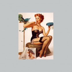 Pin-up and gray parrot...