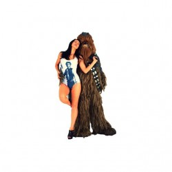 Tee shirt Wookie sexy groupie  sublimation