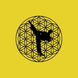 High kick karate black yellow sublimation t-shirt