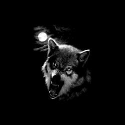 Cabal wolf t-shirt in black frame sublimation