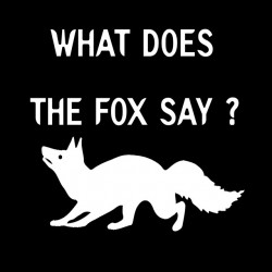 Tee Shirt what does the fox...