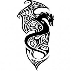 Tee Shirt dragon tatouage...