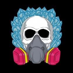 T-shirt Breaking bad skull meth black sublimation