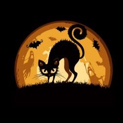 Tee shirt Halloween Cat  sublimation