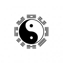 Naruto clan Hyuga ying yang...