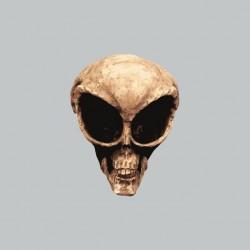 Tee shirt Crâne de Roswell gris sublimation