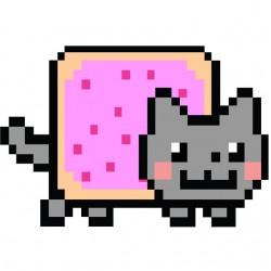 Tee Shirt Nyan Cat   sublimation