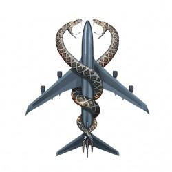 Tee shirt snakes on a plane...
