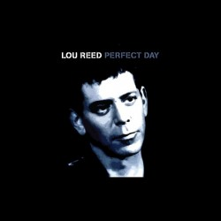 Tee shirt Lou Reed Perfect Day  sublimation
