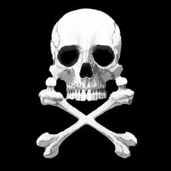 Albator Captain Harlock t-shirt. Black skull sublimation