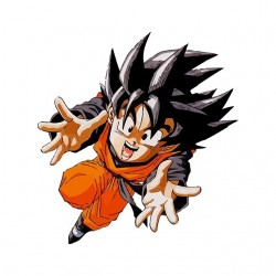 Tee shirt Goku dragon ball...
