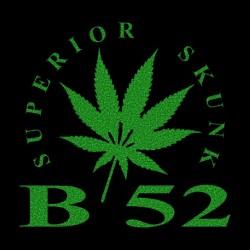 Tee Shirt B 52 black...