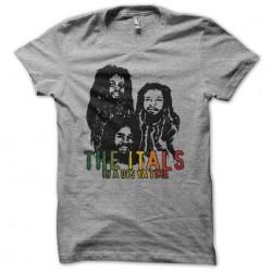 The Itals t-shirt says ya...