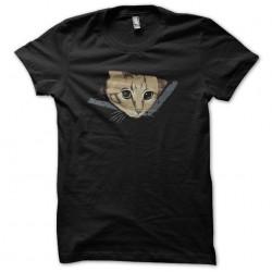 Curious cat black...