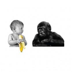 t-shirt baby banana monkey...