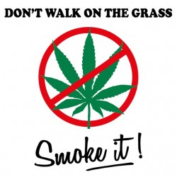 Do not Walk On The Grass...