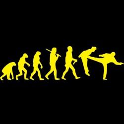 tee shirt  evolution chuck norris pied dans la gueule sublimation