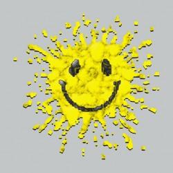 Tee Shirt Smiley Gris...