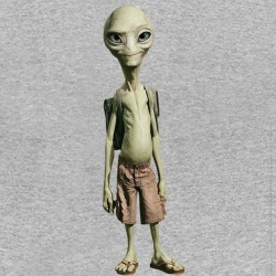 tee shirt gray paul the extra terrestrial sublimation