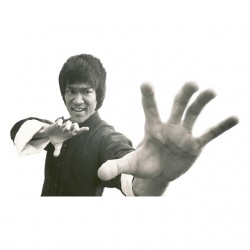 tee shirt bruce lee the...