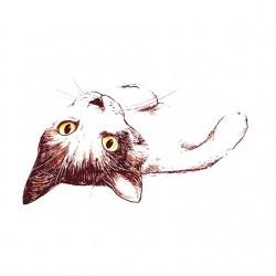cat t-shirt that tats you...