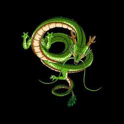 dragon shenron tee shirt of dragon ball z in black sublimation
