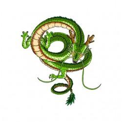 tee shirt du dragon shenron...