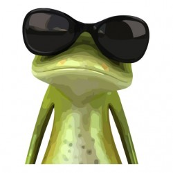 Cool white sublimation frog...