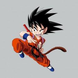 Orange Goku Tee Shirt on gray sublimation
