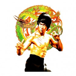 t-shirt bruce lee the white...