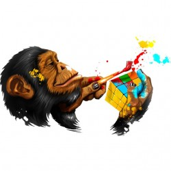 t-shirt monkey rubiks cube...