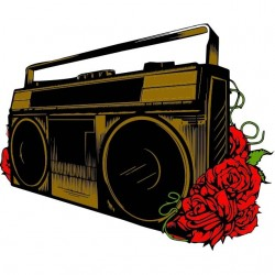 tee shirt stereo and roses...
