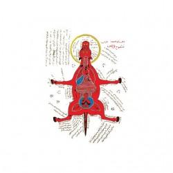 Tee shirt Cheval Anatomie...